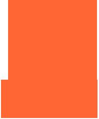 Orange_VitC