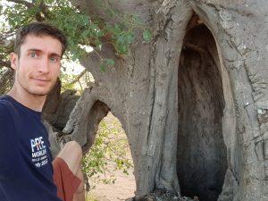 Baobab Hollow