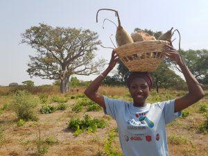 Baobab Pastimes