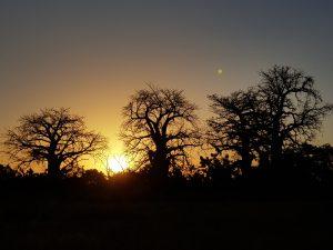 Mansajang Sunset