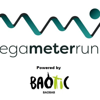 The 2019 MegaMeterRun Challenge - Powered by Baotic!